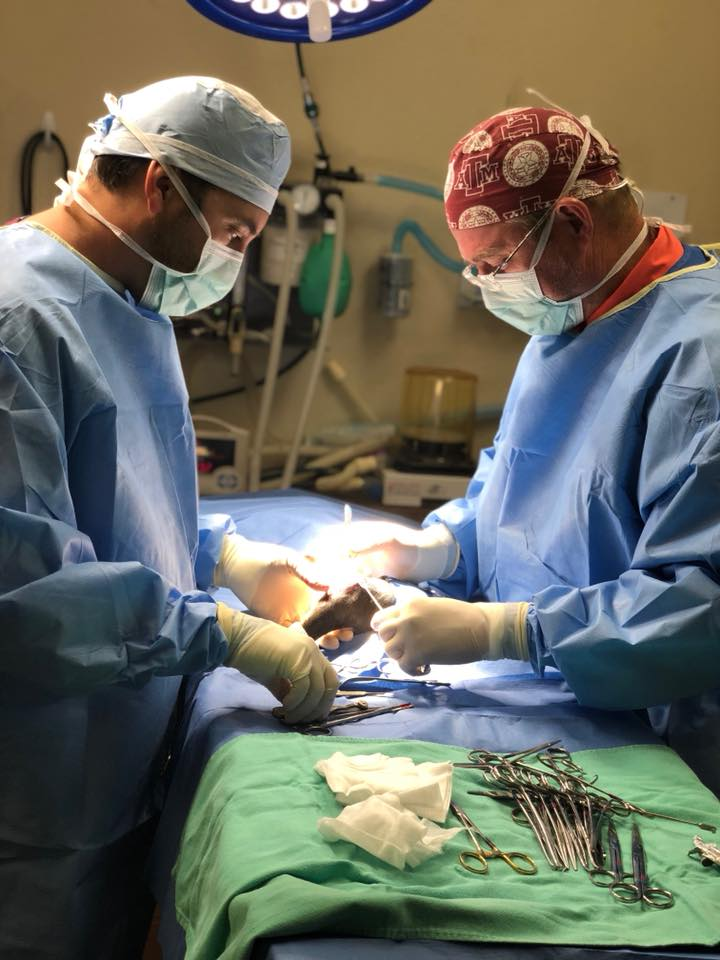 Surgery Bay City, TX